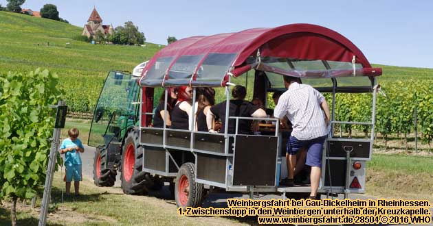 weinbergsfahrten in deutschland 2018 2019 traktor planwagen weinanbaugebiet rheinhessen rheingau. Black Bedroom Furniture Sets. Home Design Ideas